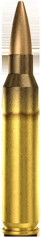 .223 REM 69GR HPBT Sniper