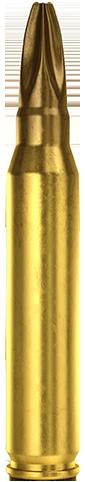 5.56x45mm Blank Long