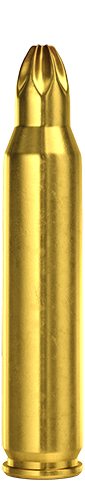 5.56x45mm Blank Short