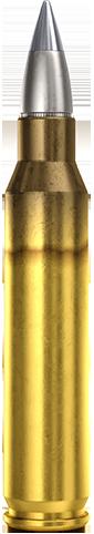 5.56x45mm SAT Improved Performance