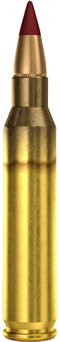 5.56x45mm Tracer M196