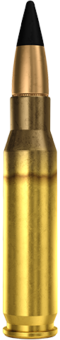 7.62x51mm NATO AP