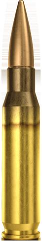 7.62x51mm Match